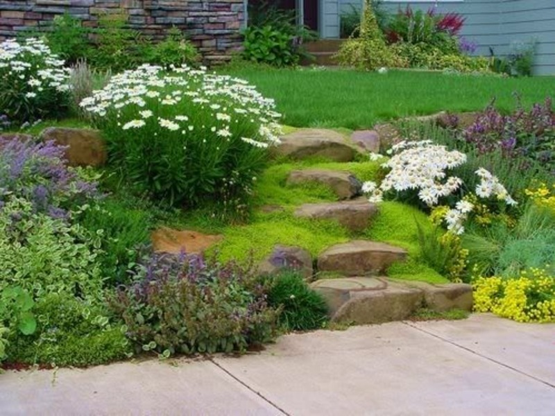Easy landscaping ideas design bookmark 11314 for Simple garden design ideas
