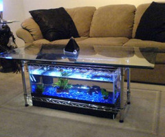 Sample Photos Modern Contemporary Unique Aquarium Design Ideas Decoration Picture   Gallery