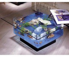 WorldS Coolest Coffee Table Aquarium