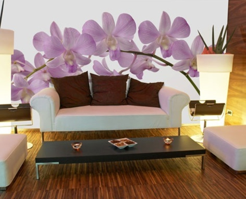 Orchid Wall Murals For Modern Wall Decor Orchid Wall