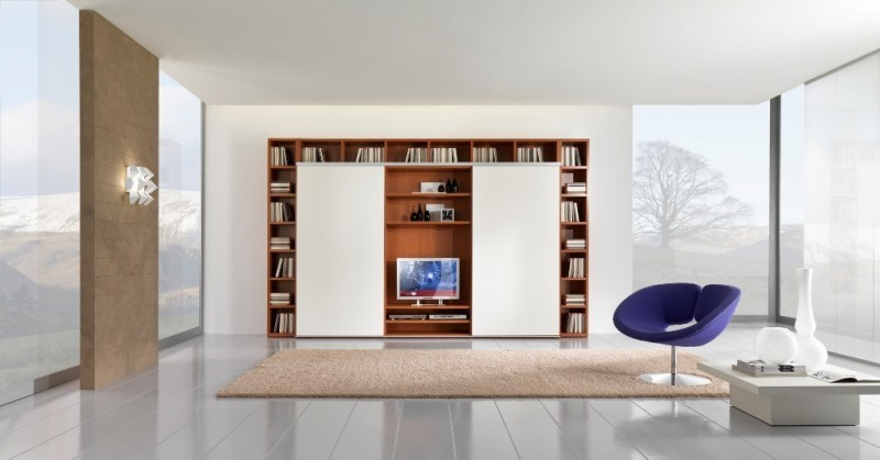 book shelves with door and tv cabinets for home library
