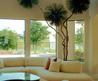 Flowers Gallery  » Blog Archive   » How To Decorate Your House With Indoor Plants