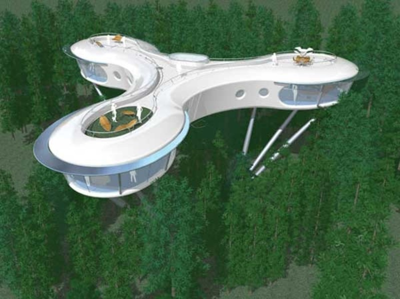 Modern Tree House Designs, Top 8 Most Amazing Tree Houses