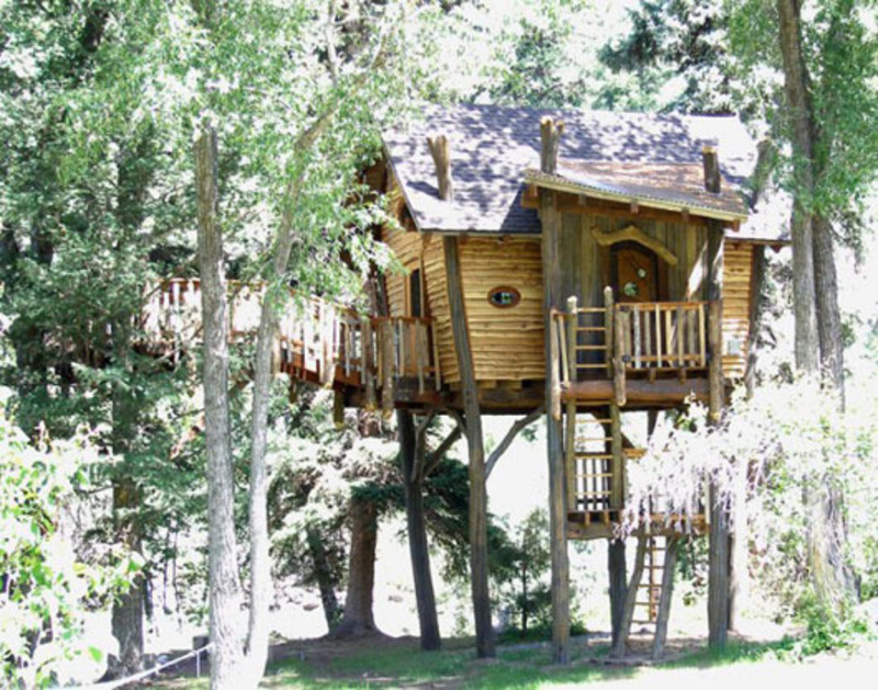 Small and artistic tree house design by green line for Tree house ideas plans