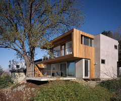 Tree House Architecture Design California By Standard Architects