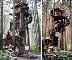 Fantasy Forest Tree House Straight Out Of A Kids Story Book