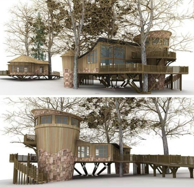 Modern Eco Friendly Tree House Designs / Design Bookmark