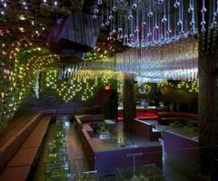 The Greenhouse Nightclub Interior  Architecture Design