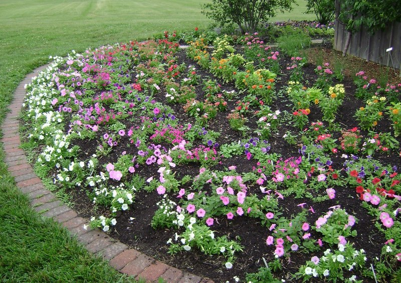 Prairie Rose 39 S Garden Ideas Galore In The Idea Garden Design Bookmark