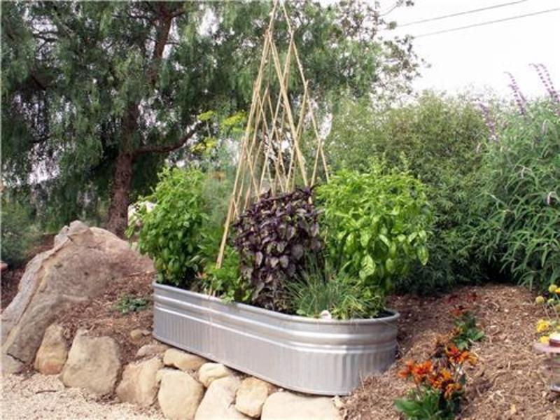 Small Garden Ideas Photos Photograph | Small Vegetable Garde