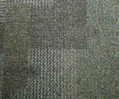 Carpets ForFb Os
