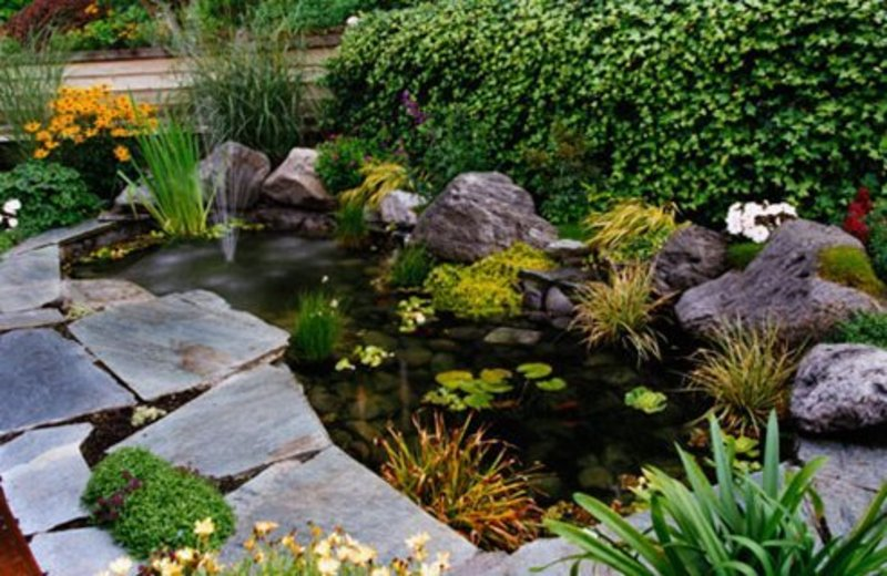 Tips on how to make a healthy fish pond design bookmark for Garden pond pictures designs
