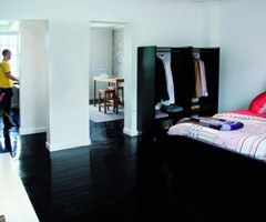Apartment Interior Design With Black Wood Floors