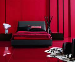 Modern Black Furniture In Red Room