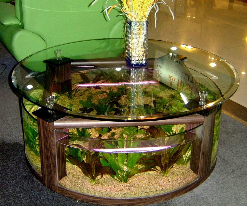 Coffee Table Aquarium, Coffee Table Aquarium Design Ideas2