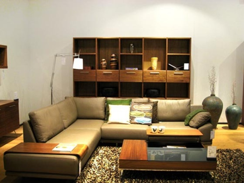 for Apartment living room furniture ideas