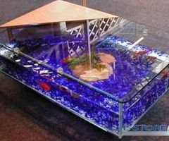 Coffee Table Aquarium Distributor