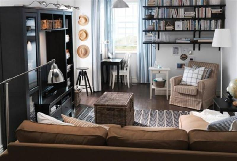 Contemporary Brown Ikea Small Living Room Design And