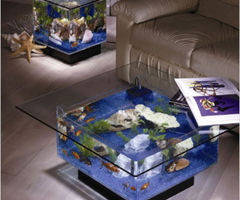 Midwest Tropical Square Coffee Table Aquarium From Mercantila.Com