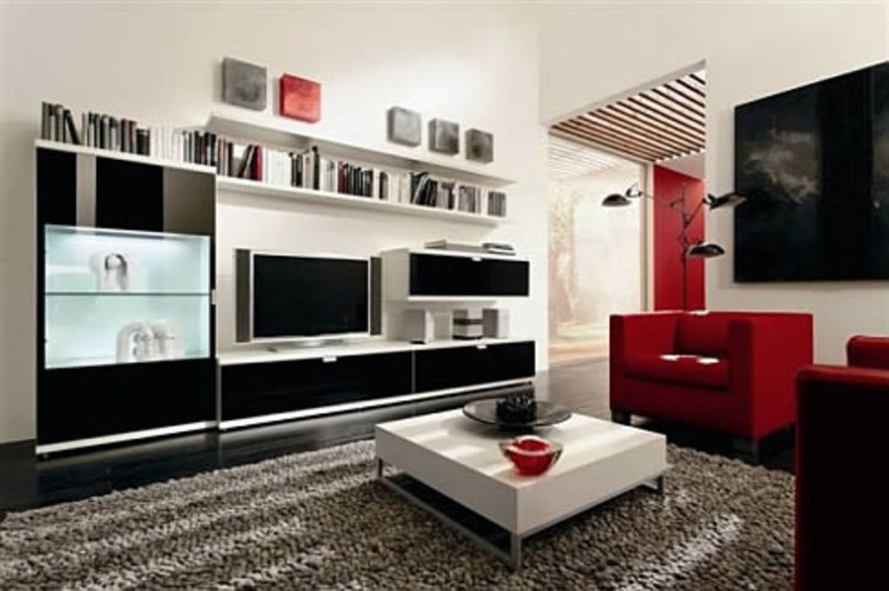 Ideas for Small Living Room Interior Design 800 x 532
