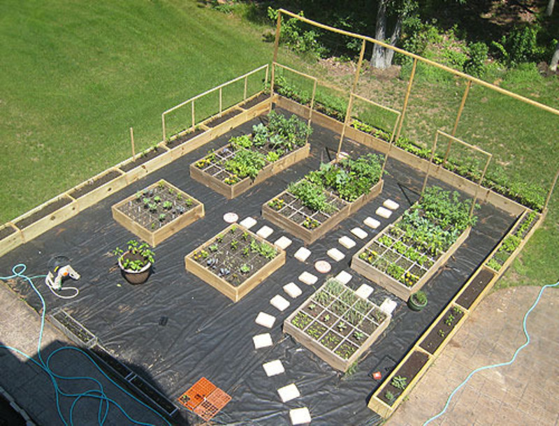 Vegetable garden ideas and designs design bookmark 15454 for Garden plot layout ideas