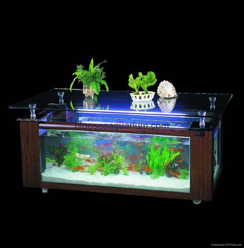Coffee Table Aquarium, Coffee Table Aquarium
