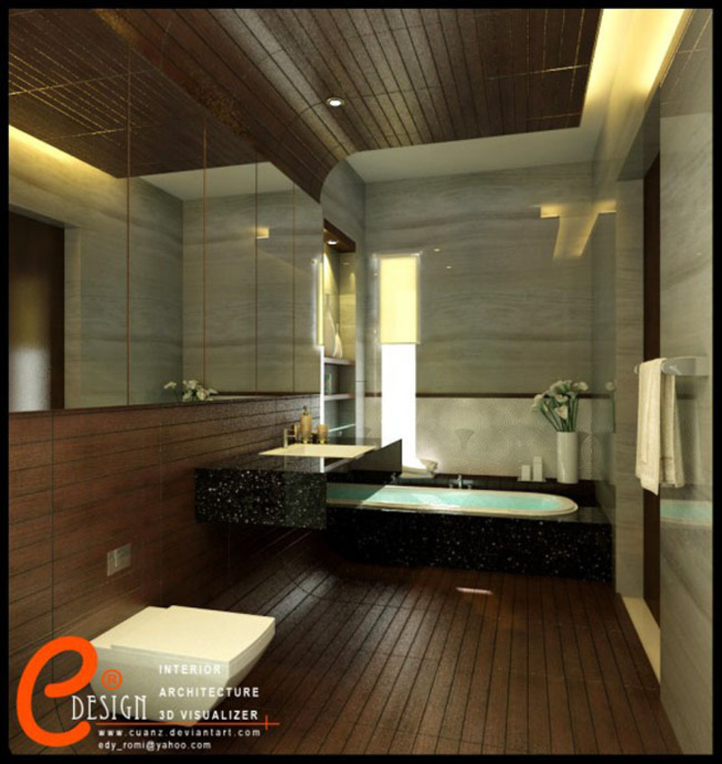 Master bathroom design by cuanz 16 luxury spa bathroom for Bathroom spa designs