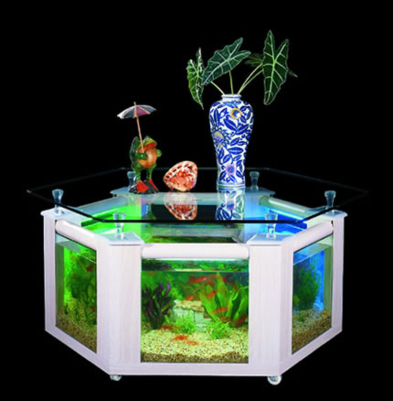 Fish tank aquarium fish tank table fish tank coffee table for Fish aquarium coffee table