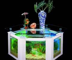 Coffee Table Aquarium Tank (Au138)