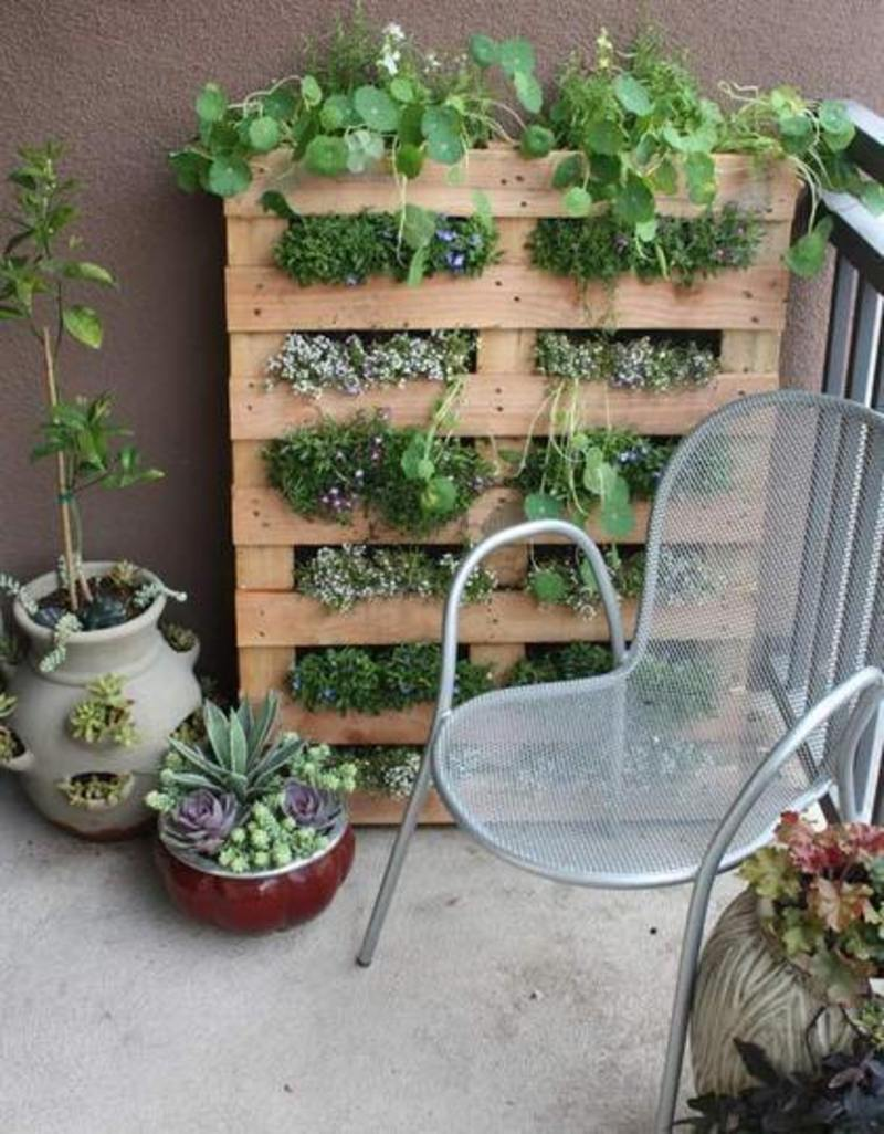Balcony Garden Ideas Pictures, Gardening Without A Garden:  10 Ideas For Your Patio Or Balcony   Renters Solutions
