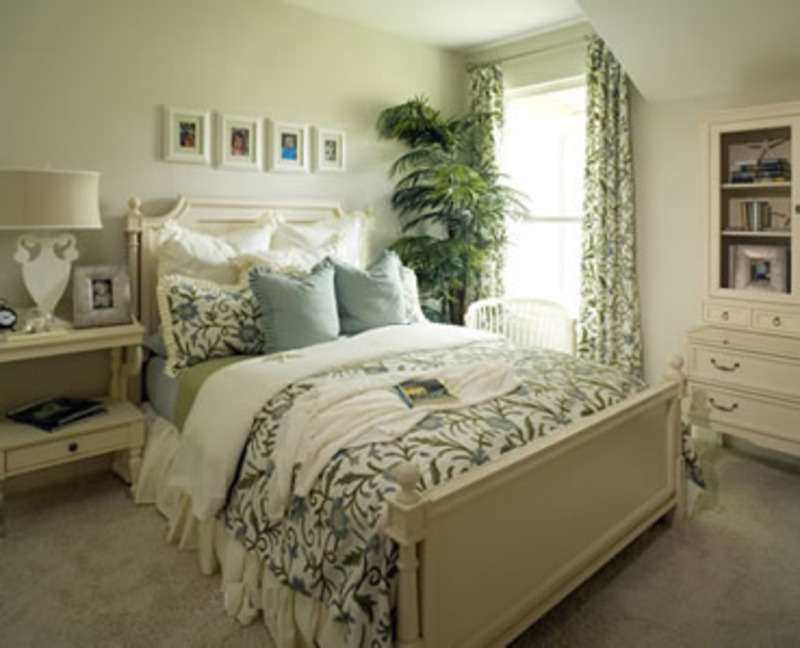 Bedroom ideas picture great bedroom colors design for Color schemes bedroom ideas