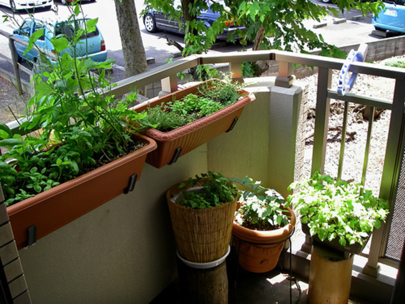 Balcony Garden Ideas Pictures, Balcony Ideas For Small Apartment Balcony Ideas Garden – Homes Aura.Com