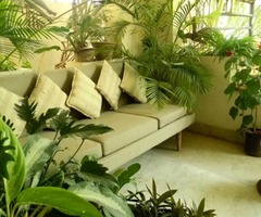 Balcony Gardening – Design And Create Your Little Green Refuge With Plants, Accessories, Ideas, Accents And More