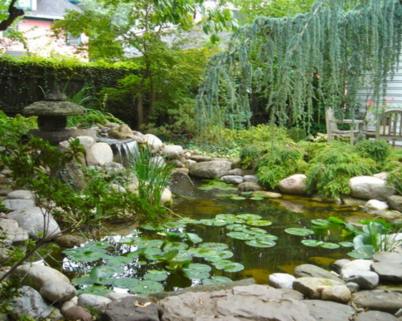 Fish pond water features design pictures remodel decor for Water pond design