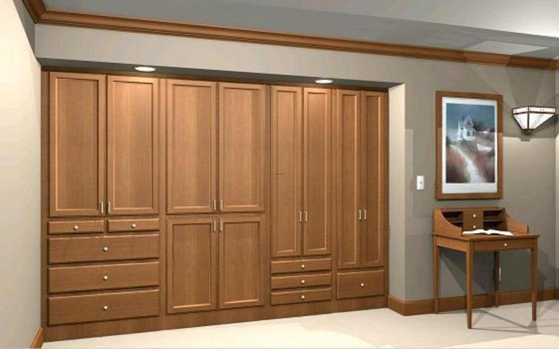 Beyond the closet the wardrobe wall design bookmark 15916 for Bedroom built in wardrobe designs