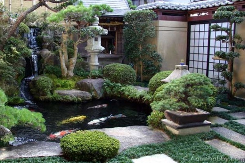 Fish Pool Design, Stocking A Feng Shui Fish Pond