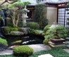 Stocking A Feng Shui Fish Pond