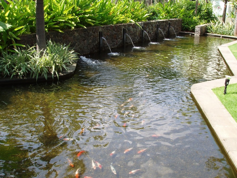 Fish pond design idea in modern mini home page design for Koi pond pool