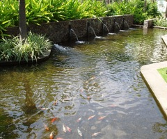 Fish Pond Design Idea In Modern Mini Home Page