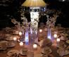Wedding Decorations Ideas / Traditional / Modern / Luxurious