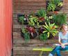 Garden & Landscaping. Design A Small Place To Grow A Variety Of Plants That Easily Treated