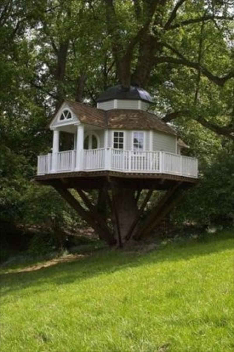 33 simple and modern kids tree house designs design for Modern tree house designs
