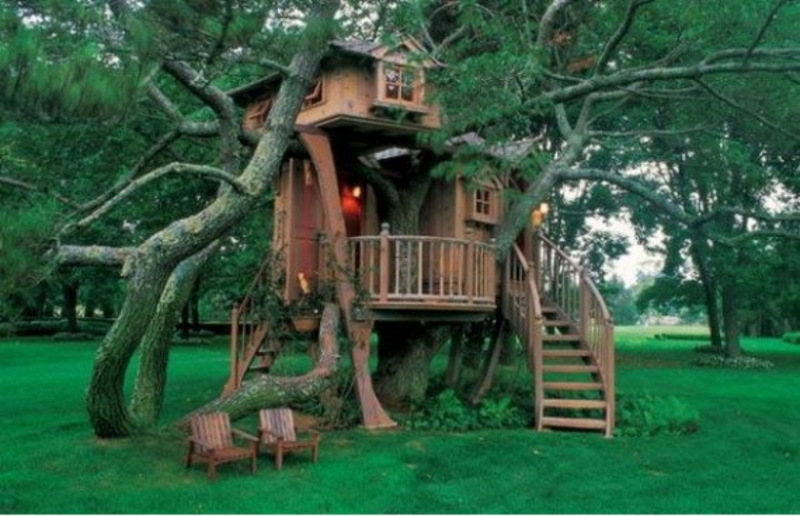 Kids Tree House, Marvelous Outdoor Tree Houses For Kids