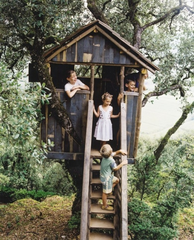 Kids Tree House, Rustic Kids Tree House Inspiration
