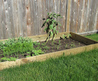 How To Make A Vegetable Garden With Limited Space