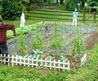 Choosing The Right Size Vegetable Garden