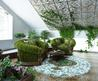 Cheap Ideas For Eco Friendly Interior Decorating With Tradescantia House Plants