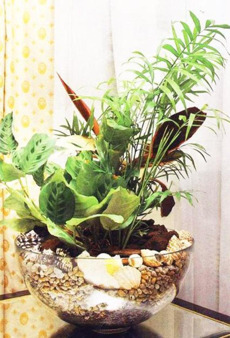 Modern interior plants home decor for Modern indoor plants