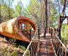 Curvaceous Fibonacci Tree House Is A Lofty Eco Retreat For Kids & Adults Alike Fibonacci Tree House