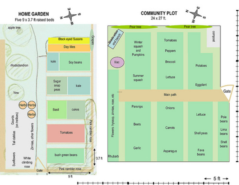 Vegetable garden layout plans design bookmark 20864 for Small garden plot layout